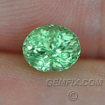 merelani green garnet oval