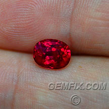 pigeon blood red ruby oval