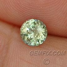 green yellow round montana sapphire