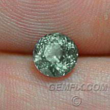 Montana Sapphire round untreated