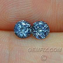 Montana Sapphire Round blue pair
