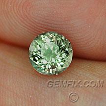 round green yellow Montana Sapphire