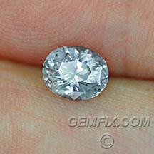 Montana Sapphire silver oval