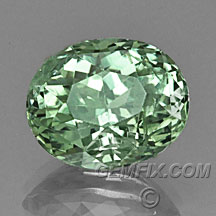 green oval montana sapphire