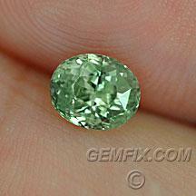 green montana sapphire oval