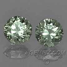 green Montana Sapphire round pair