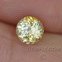 round Montana Sapphire yellow