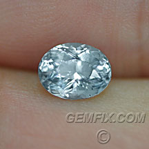 oval untreated Montana Sapphire