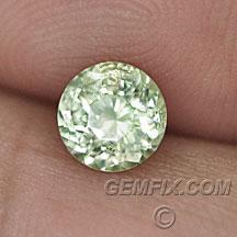 Montana Sapphire untreated yellow round