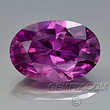 untreated violet pink sapphire oval