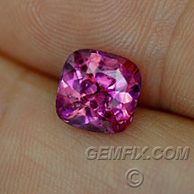 cushion untreated pink magenta sapphire