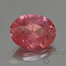 pink peach oval sapphire