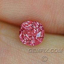 cushion round pink sapphire