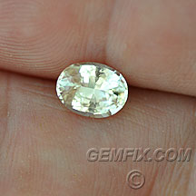 light yellow sapphire no heat oval
