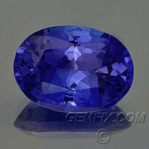 oval intense tanzanite