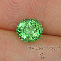 mint green tourmaline oval