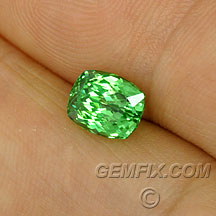 tsavorite garnet cushion mint green
