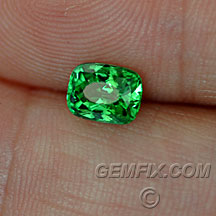 cushion tsavorite garnet