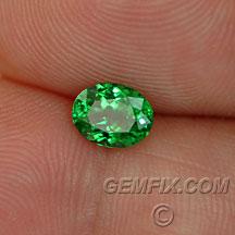 tsavorite green garnet oval
