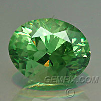 Garnet Demantoid