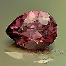 Garnet Red Pink